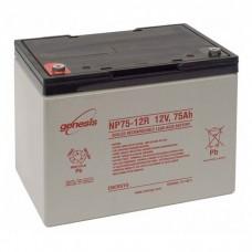 Аккумулятор свинцово-кислотный Genesis NP 75-12 (75 А/ч, 12 В)